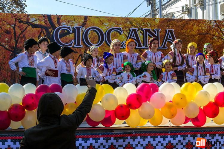 ciocana_2015.jpg